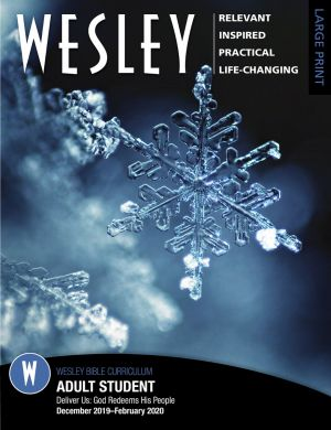 Wesley Adult Bible Student, Large Print (Winter)