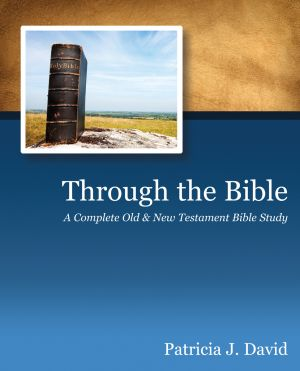 Through The Bible: A Complete Old & New Testament Bible Study