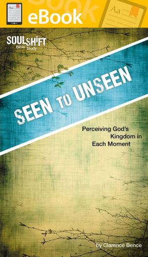 Seen to Unseen: Perceiving God's Kingdom in Every Moment **E-BOOK**(SoulShift Bible Study)