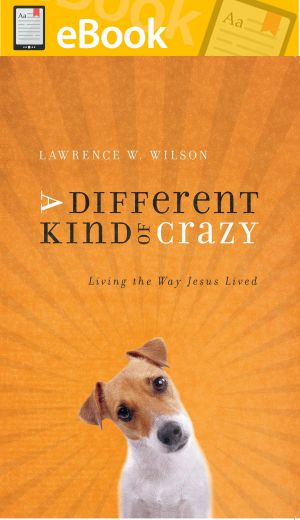 A Different Kind of Crazy: Living the Way Jesus Lived **E-BOOK**