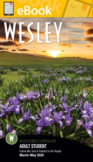 Wesley Adult Bible Student (SPRING) **E-BOOK**