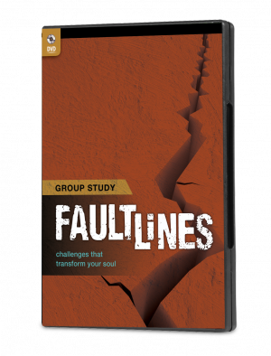 Faultlines Group Study DVD