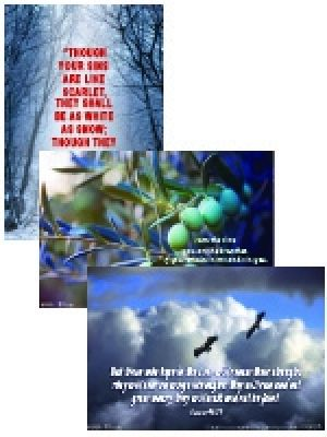 Word Action Adult Faith Connections Poster Set (Winter)
