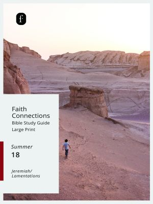 Word Action Faith Connections Adult Bible Study Guide, Large Print  (Summer)