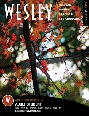 Wesley Adult Bible Student Large Print (Fall)