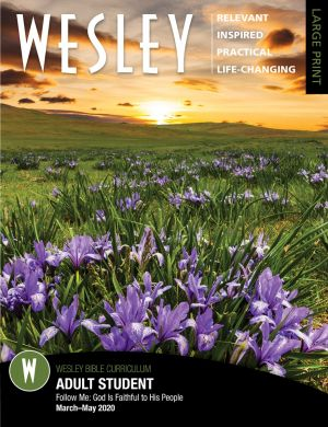 Wesley Adult Bible Student, Large Print (Spring)