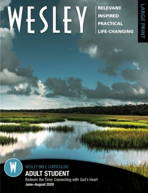 Wesley Adult Bible Student—Large Print (SUMMER)