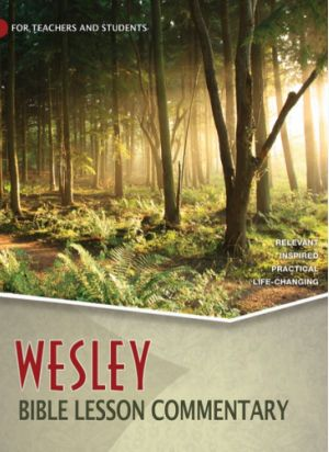Wesley Bible Lesson Commentary Volume 4