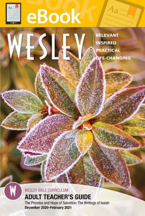 Wesley Adult Bible Teacher  (WINTER) **E-BOOK**